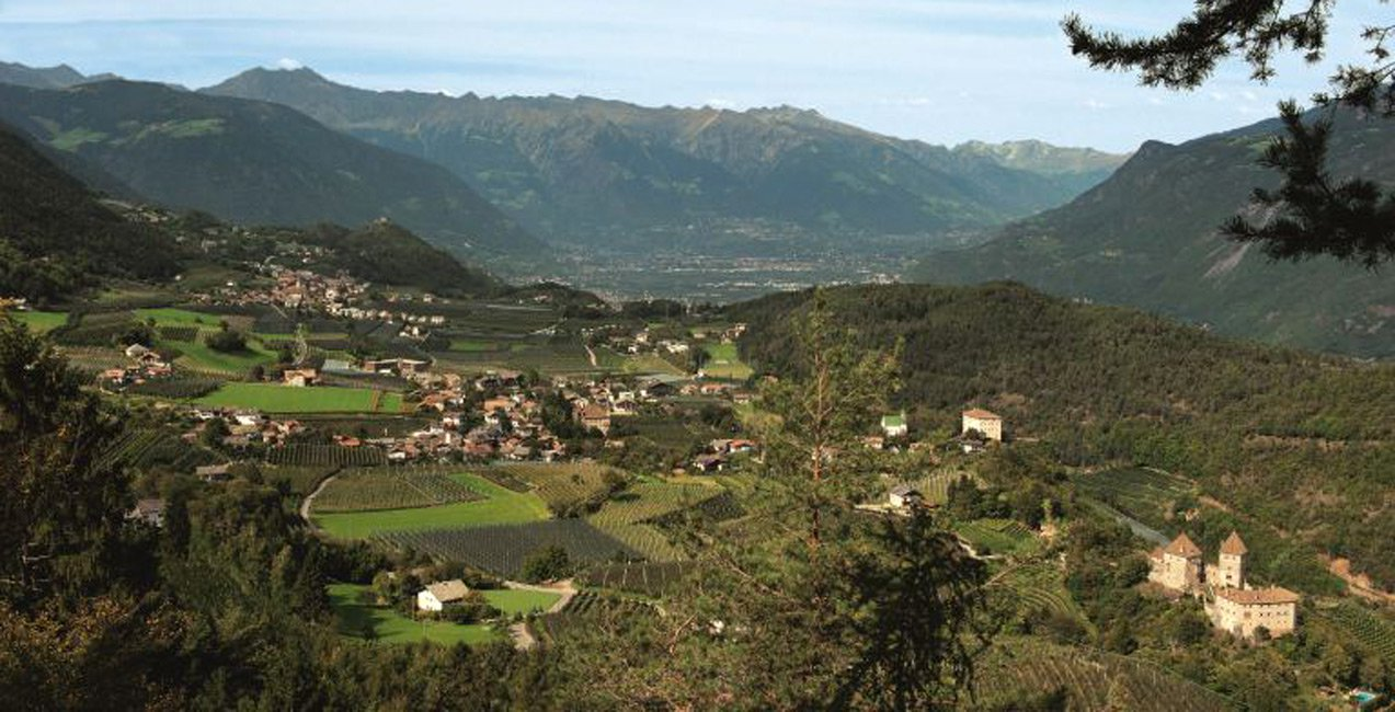 Regione turistica Tesimo-Prissiano/Merano